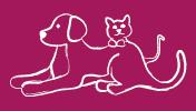 Asociacion Protectora de Animales Olyvia